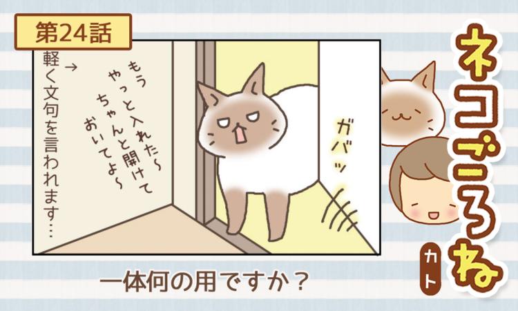 【まんが】第24話:【一体何の用ですか?】まんが描き下ろし連載♪ ネコごろね(著者:カト)
