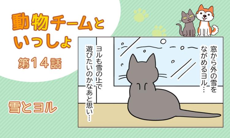 【まんが】第14話:【雪とヨル】描き下ろし漫画♪「動物チームといっしょ」(著者:月田エミ)