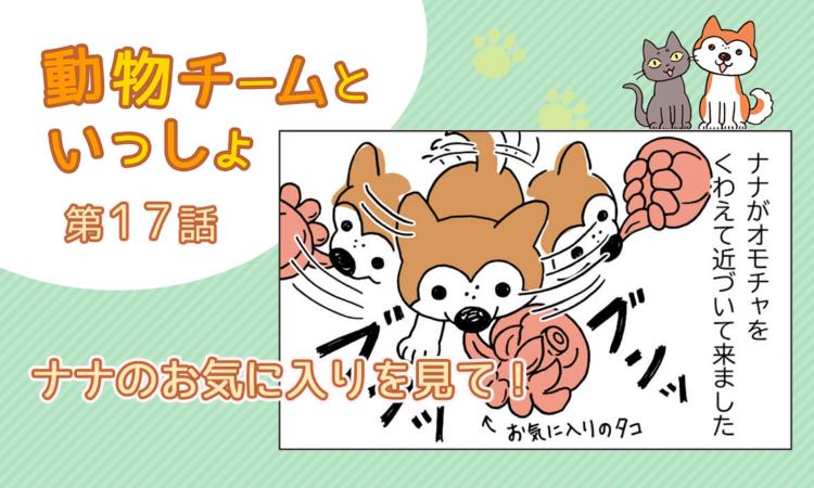 【まんが】第17話:【ナナのお気に入りを見て!】描き下ろし漫画♪「動物チームといっしょ」