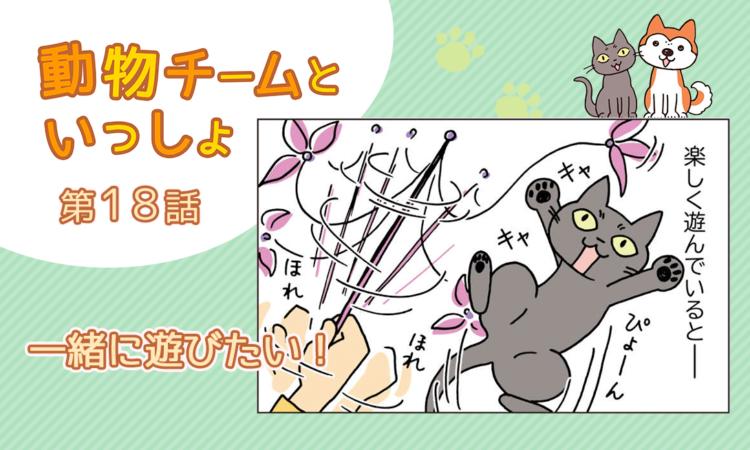 【まんが】第18話:【一緒に遊びたい!】描き下ろし漫画♪「動物チームといっしょ」(著者:月田エミ)