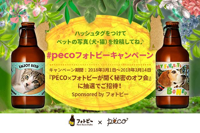フォトビーキャンペーンで投稿して参加しよう!PECO読者オフ会 Sponsored by フォトビー