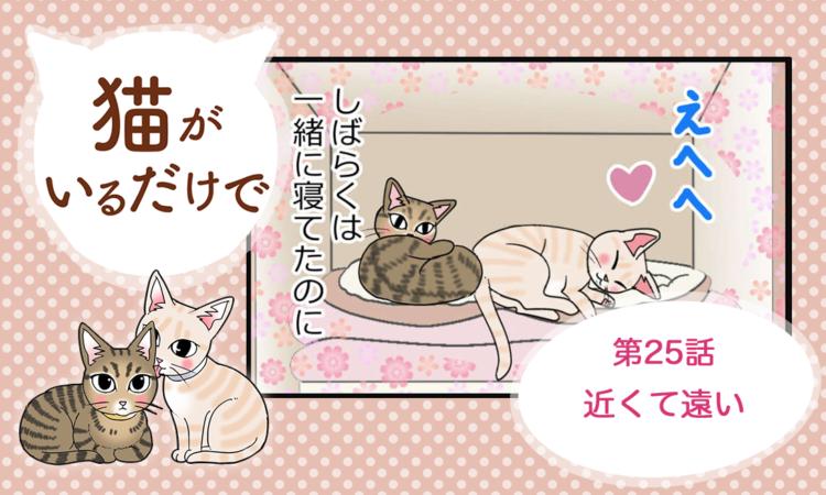 【まんが】第25話:【近くて遠い】まんが描き下ろし連載♪ 猫がいるだけで(著者:暁龍)