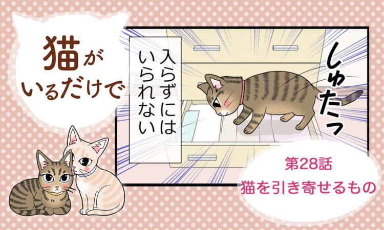【まんが】第28話:【猫を引き寄せるもの】まんが描き下ろし連載♪ 猫がいるだけで(著者:暁龍)