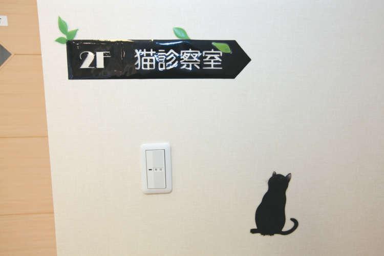 猫診察室に上がる階段。「空を見上げる猫」が目印
