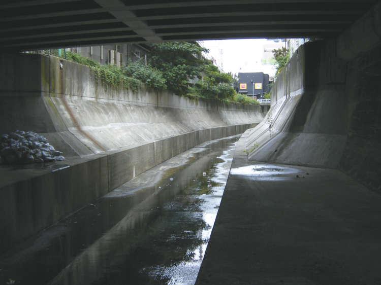 クロと大吉が落ちて上がれなかった渋谷川