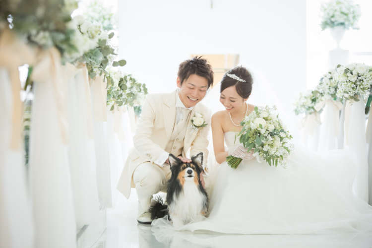 結婚式に参列した一匹のワンちゃんのぬいぐるみ。そこには花嫁の強い願いが…