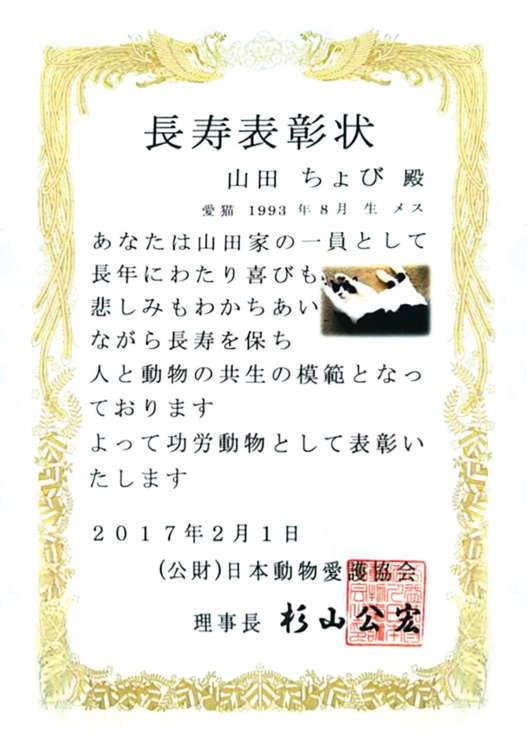 ちょびちゃんは昨年、「公益財団法人 日本動物愛護協会」から「長寿表彰状」を授与された。この驚異的なお達者の秘訣について山田さんは「穏やかな性格とよく寝ることかな?」と話す。
