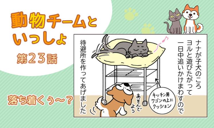 【まんが】第23話:【落ち着くぅ~?】描き下ろし漫画♪「動物チームといっしょ」(著者:月田エミ)