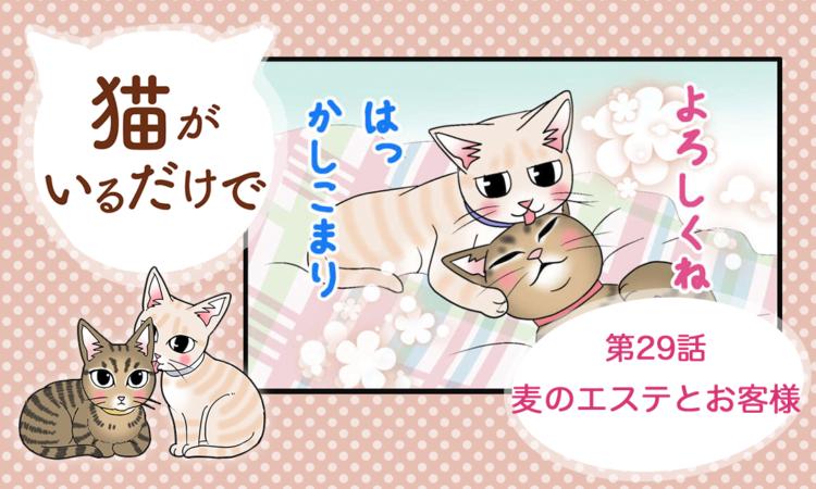 【まんが】第29話:【麦のエステとお客様】まんが描き下ろし連載♪ 猫がいるだけで(著者:暁龍)