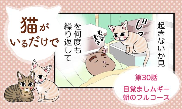 【まんが】第30話:【目覚ましムギー朝のフルコース】まんが描き下ろし連載♪ 猫がいるだけで