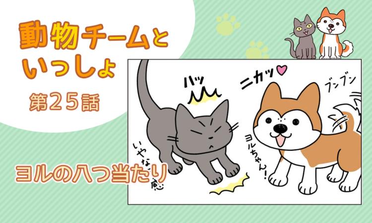 【まんが】第25話:【ヨルの八つ当たり】描き下ろし漫画♪「動物チームといっしょ」(著者:月田エミ)