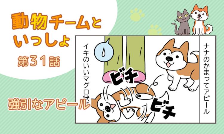【まんが】第31話:【強引なアピール】描き下ろし漫画♪「動物チームといっしょ」(著者:月田エミ)