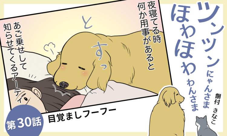 【まんが】第30話:【目覚ましフーフー】まんが描き下ろし連載♪ ツンツンにゃんさま ほわほわわんさま