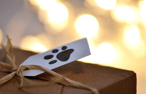 誕生日やイベント時に、愛犬にもプレゼントをしよう!