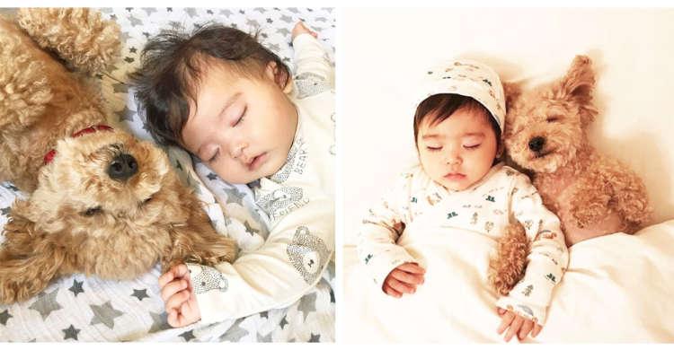 【天使たちのおねんね♪】赤ちゃんとワンコの仲良し姉妹。ふたりの寝姿に…全世界が癒やされた(*´Д`)