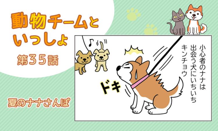 【まんが】第35話:【夏のナナさんぽ】描き下ろし漫画♪「動物チームといっしょ」(著者:月田エミ)