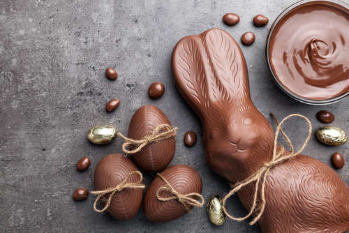 ウサギにチョコレートを食べさせてはいけません!その理由は?