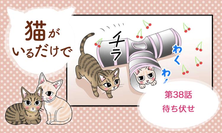 【まんが】第38話:【待ち伏せ】まんが描き下ろし連載♪ 猫がいるだけで(著者:暁龍)