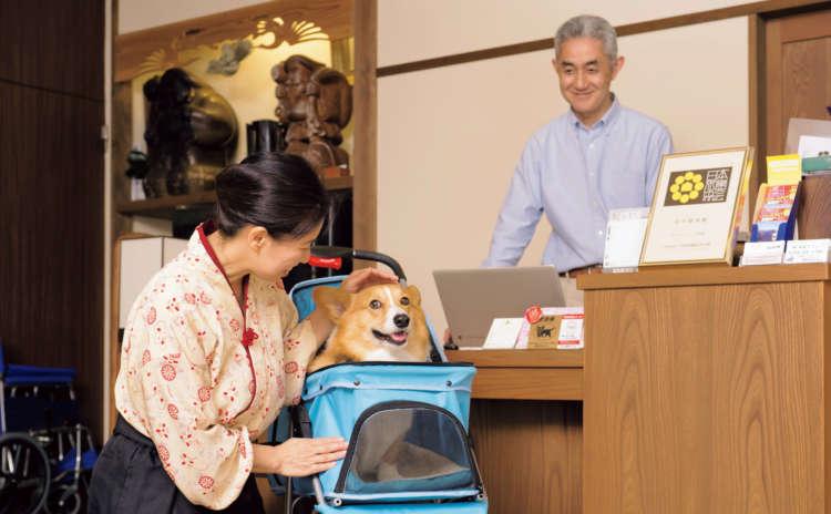 旅館内を自由に歩くのを禁止されているハッピーの移動手段はカートなのです。