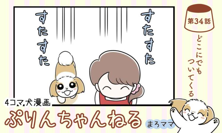 【まんが】第34話:【どこにでもついてくる】描き下ろし漫画♪ 4コマ犬漫画「ぷりんちゃんねる」