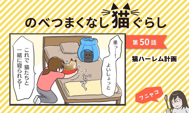 【まんが】第50話:【猫ハーレム計画】まんが描き下ろし連載♪ のべつまくなし猫ぐらし