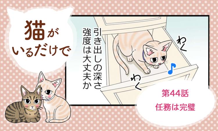 【まんが】第44話:【任務は完璧】まんが描き下ろし連載♪ 猫がいるだけで(著者:暁龍)