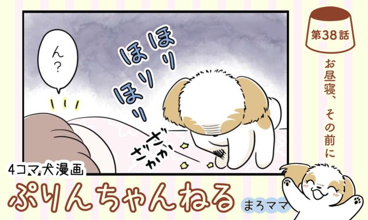 【まんが】第38話:【お昼寝、その前に】描き下ろし漫画♪ 4コマ犬漫画「ぷりんちゃんねる」