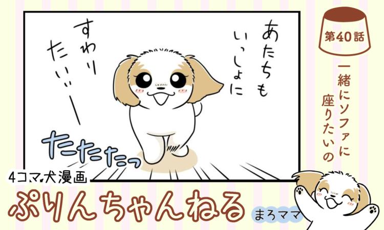 【まんが】第40話:【一緒にソファに座りたいの】描き下ろし漫画♪ 4コマ犬漫画「ぷりんちゃんねる」