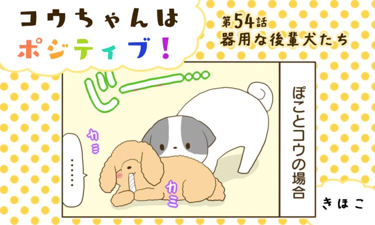 【まんが】第54話:【器用な後輩犬たち】まんが描き下ろし連載♪ コウちゃんはポジティブ!