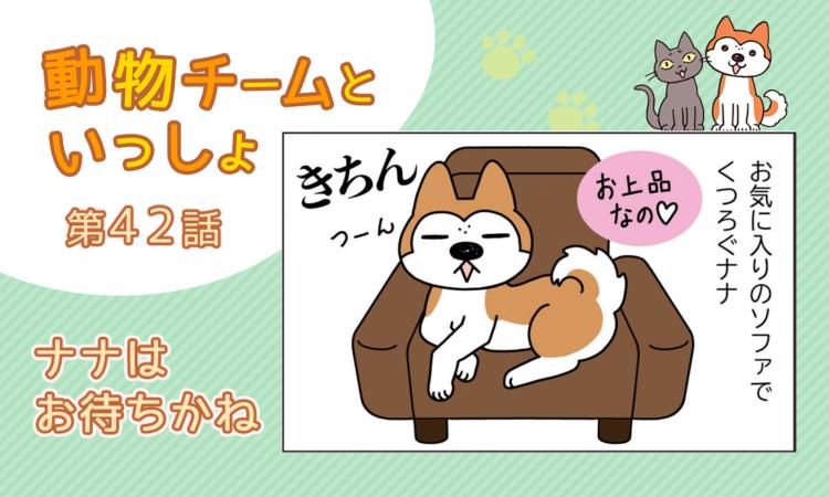 【まんが】第42話:【ナナはお待ちかね】描き下ろし漫画♪「動物チームといっしょ」(著者:月田エミ)