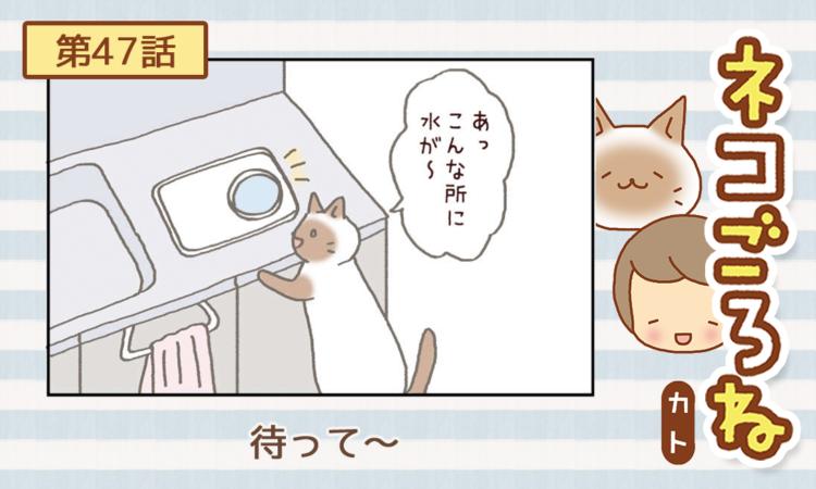 【まんが】第47話:【待って~】まんが描き下ろし連載♪ ネコごろね(著者:カト)