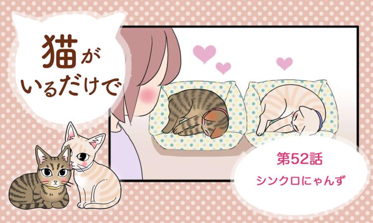 【まんが】第52話:【シンクロにゃんず】まんが描き下ろし連載♪ 猫がいるだけで(著者:暁龍)