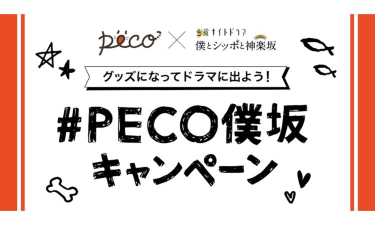 グッズになってドラマに出よう!『#PECO僕坂』Instagramキャンペーン、締切迫る!