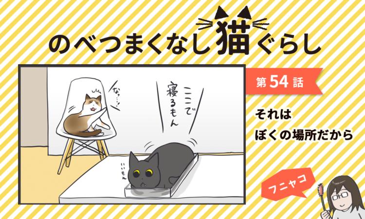 【まんが】第54話:【それはぼくの場所だから】まんが描き下ろし連載♪ のべつまくなし猫ぐらし
