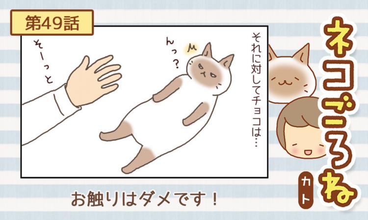 第49話:お触りはダメです!