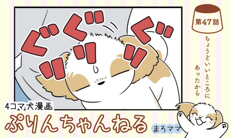 【まんが】第47話:【ちょうどいいところにあったから】 4コマ犬漫画「ぷりんちゃんねる」