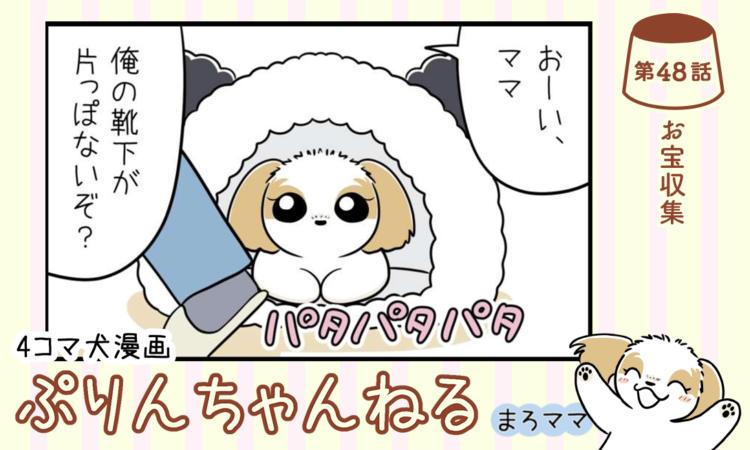 【まんが】第48話:【お宝収集】描き下ろし漫画♪ 4コマ犬漫画「ぷりんちゃんねる」(著者:まろママ)