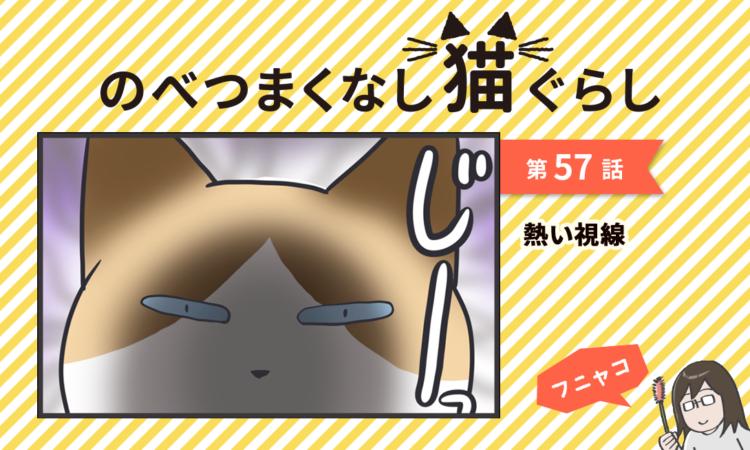 【まんが】第57話:【熱い視線】まんが描き下ろし連載♪ のべつまくなし猫ぐらし(著者:フニャコ)