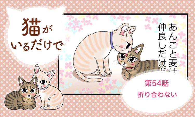 【まんが】第54話:【折り合わない】まんが描き下ろし連載♪ 猫がいるだけで(著者:暁龍)