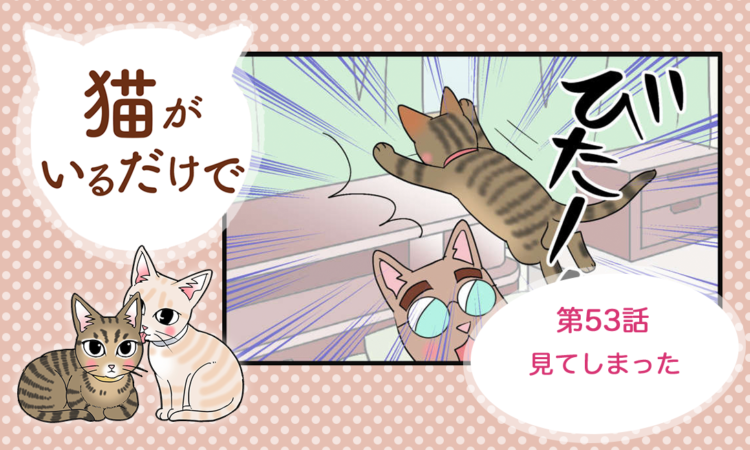 【まんが】第53話:【見てしまった】まんが描き下ろし連載♪ 猫がいるだけで(著者:暁龍)
