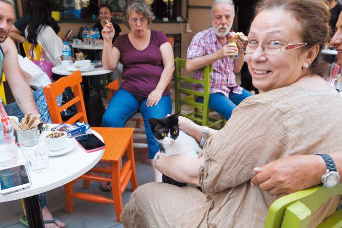 休日のカフェでくつろいでいる奥様の膝の上に黒白猫さんが!