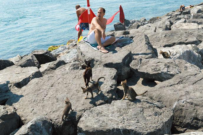 ヨーロッパ側とアジア側を分ける、ボスポラス海峡の海岸で暮らす猫たち。