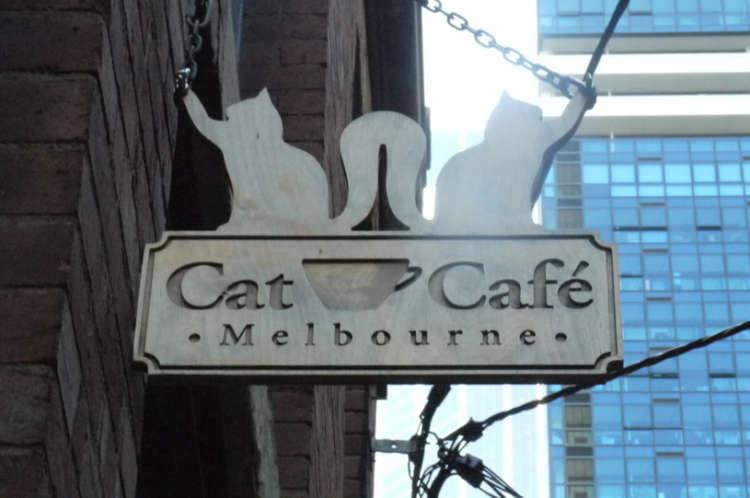 オーストラリア初の猫カフェの起原は日本【メルボルン】
