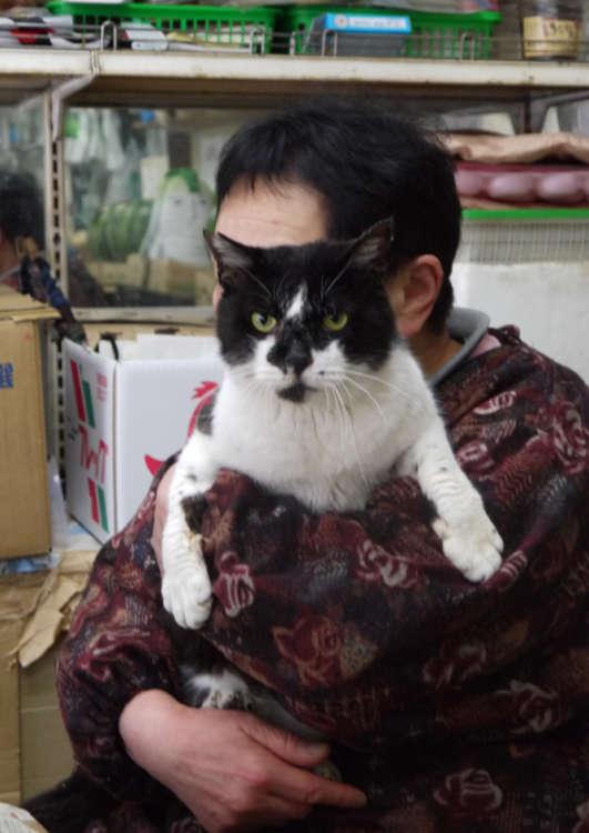 貞子さんに抱かれてご機嫌のブッコ君