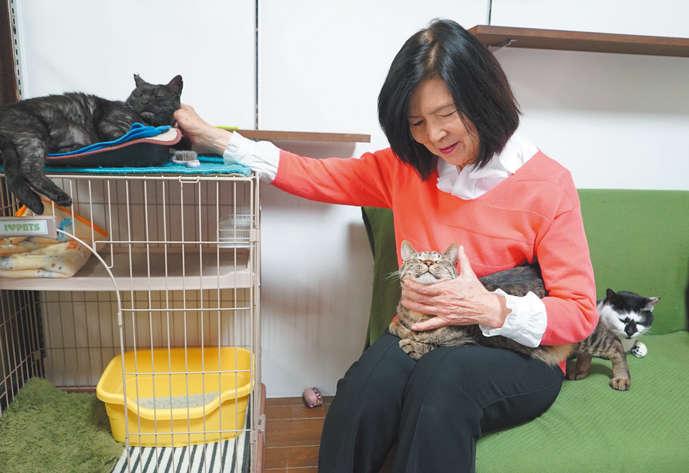 新入り猫の様子見で来店した地元保護団体の佐藤さん
