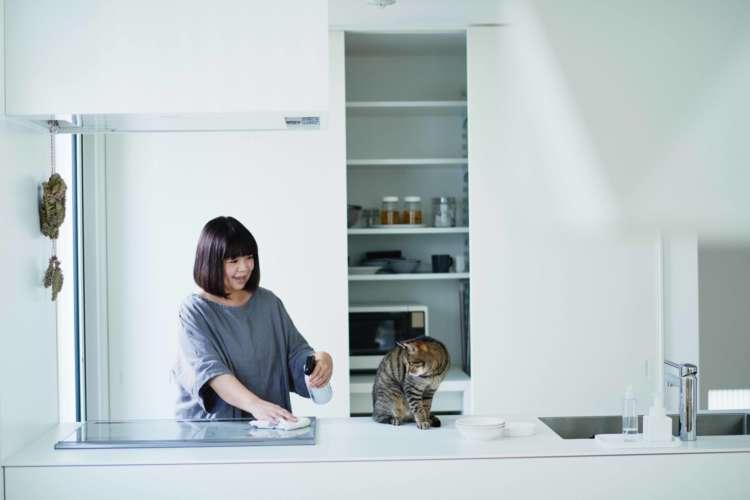 猫と暮らすためのアイディアが満載♪ 「猫がよろこぶ掃除・片づけ」フォトブック