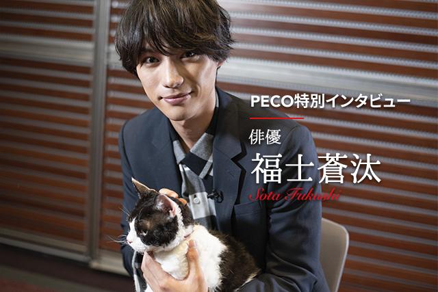 映画『旅猫リポート』主演・福士蒼汰さんが語る本作の魅力と、ペットとの絆