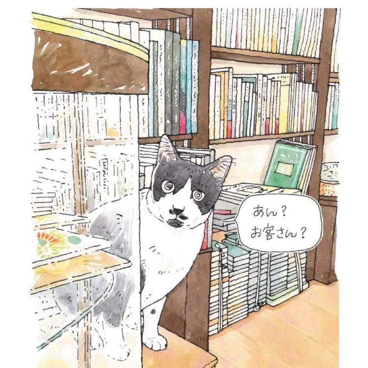 休日は猫がいるお店でのんびり過ごそう♪ 看板猫がいるお店をまとめた本「東京猫びより散歩」