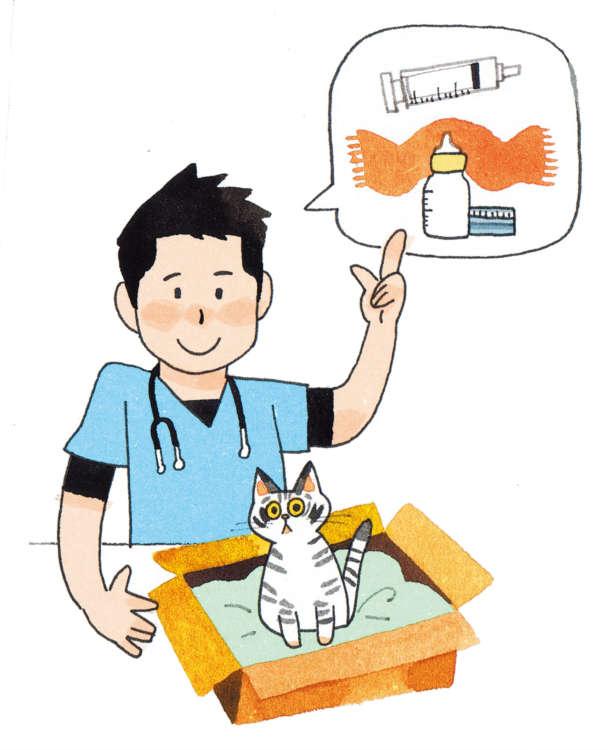 動物病院を受診する