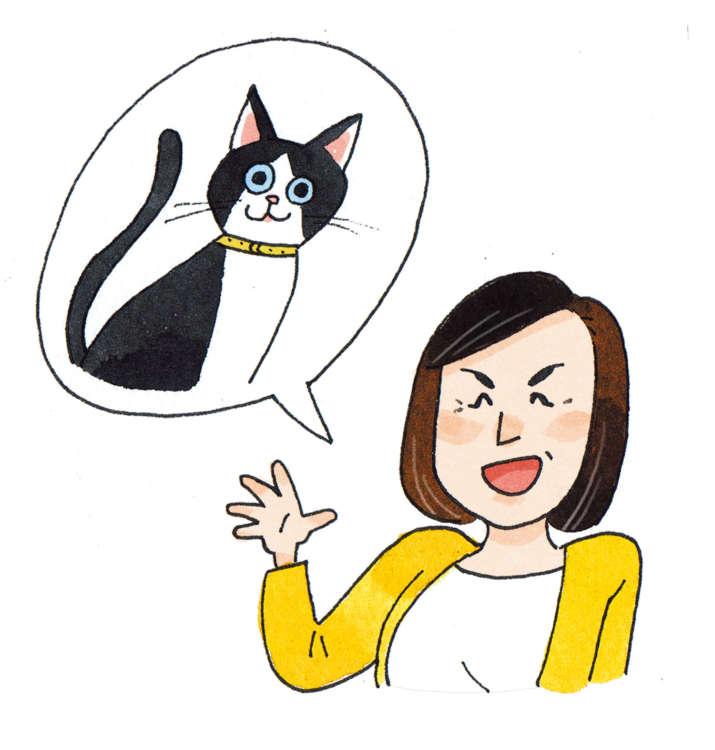 あなたが猫を保護したら……